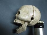 Flaschenöffner Briefbeschwerer Skull 6 cm